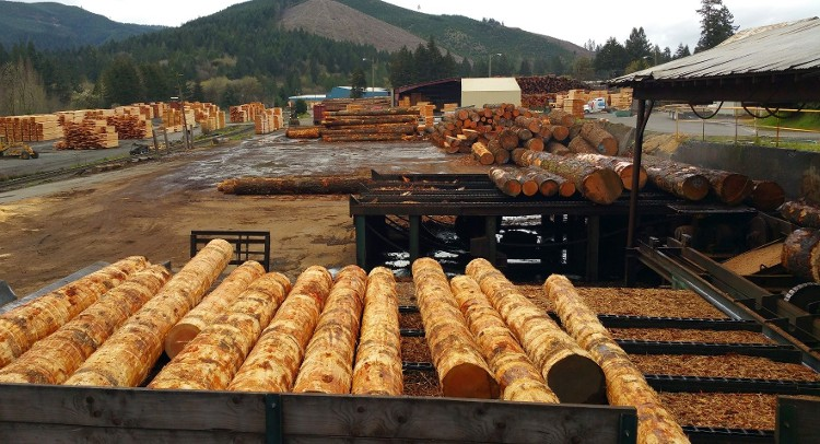 Wholesale Lumber - Milling Area